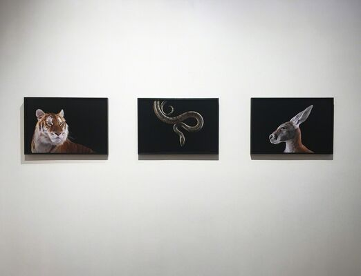 Brad Wilson: AFFINITY, installation view