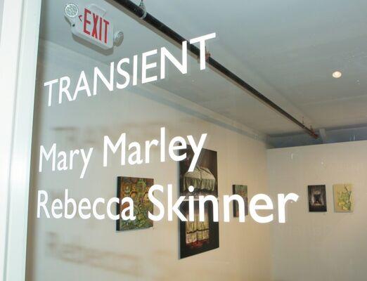 Transient, installation view