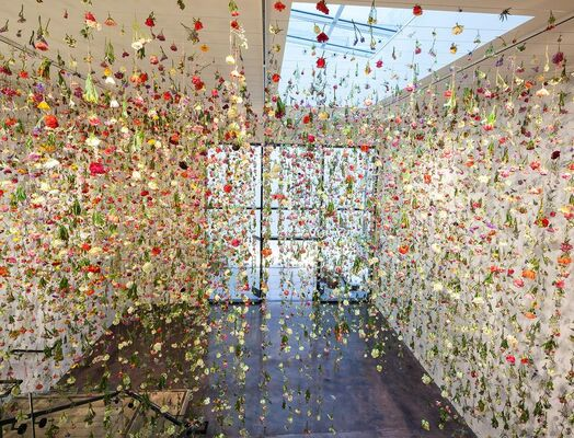The Beauty of Decay, installation view