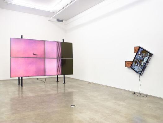 "Collin Leitch, ""Camera Rider"", installation view"