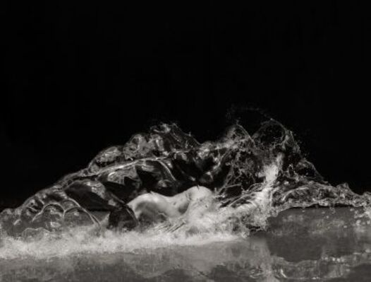 Bodies of Water, installation view