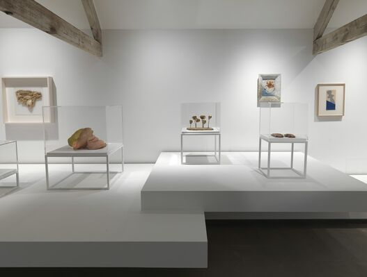 Unconscious Landscape. Works from the Ursula Hauser Collection, installation view