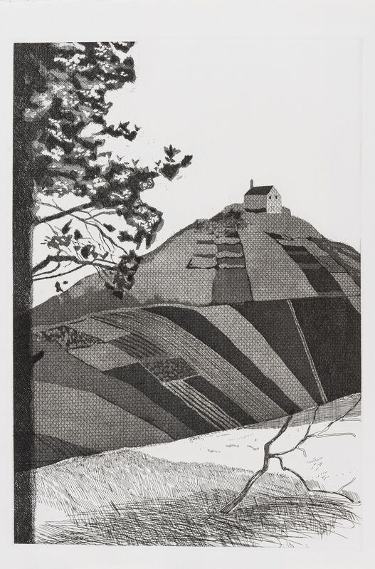 David Hockney, 'A Wooded Landscape (Tokyo 72)', 1969, Print, Etching, Forum Auctions