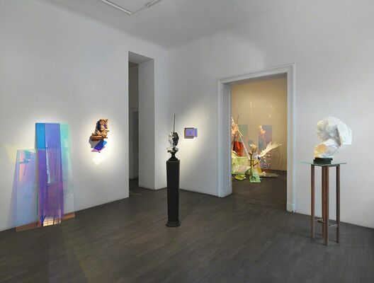 WIM BOTHA, installation view
