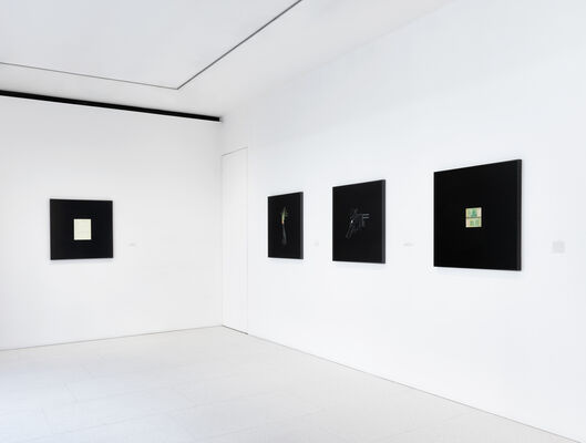 Taryn Simon: A Burn Scar Visible from Space, installation view