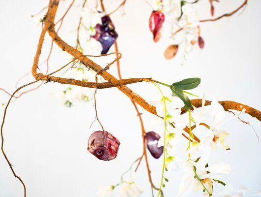 Jesse Krimes: Strange Roots, installation view
