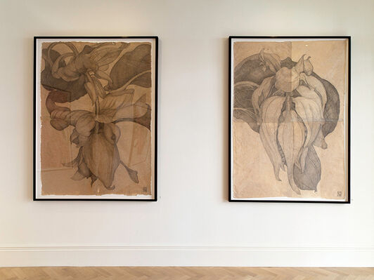Sarah Graham, installation view