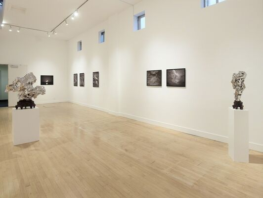 Speak to the Stones, and the Stars Answer, installation view