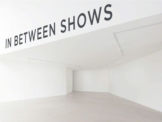 In Between Shows, installation view