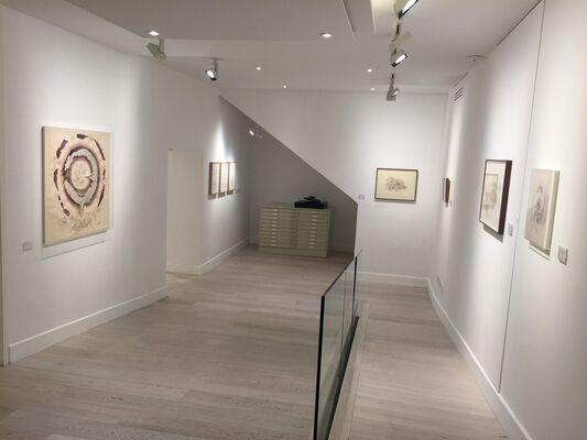 Florilegium, installation view