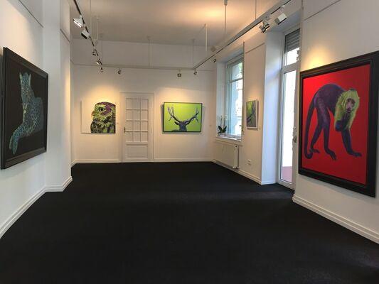 #kollerism HELMUT KOLLER, installation view