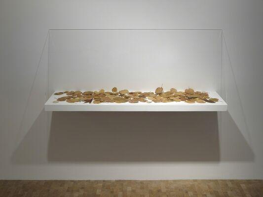 Yuken Teruya: Monopoly, installation view