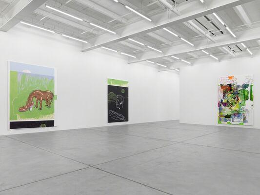 Michael Williams, installation view