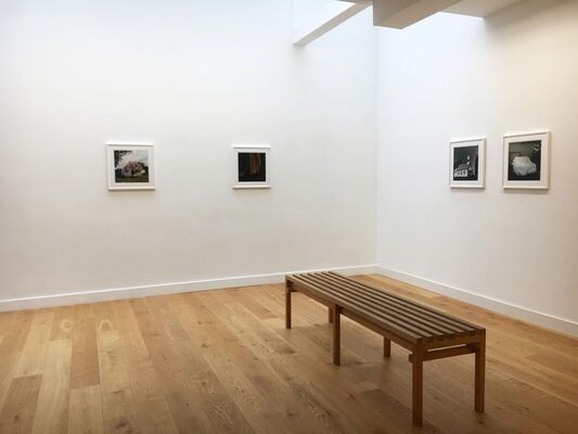 States of Glory, installation view