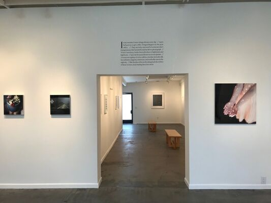 Cig Harvey: A Magic World, installation view