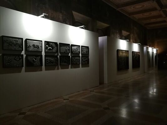 Segnimigranti, installation view