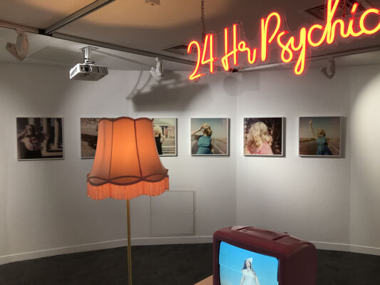 Parrallel Lives, installation view