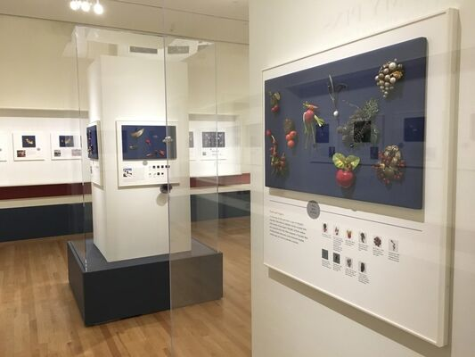 Read My Pins: The Madeleine Albright Collection, installation view
