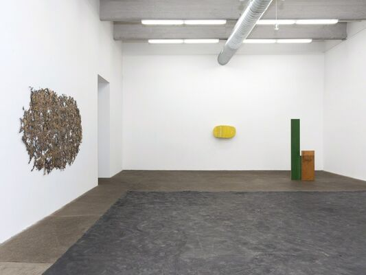 Michel François, Liz Larner, Tony Lewis, Virginia Overton, installation view