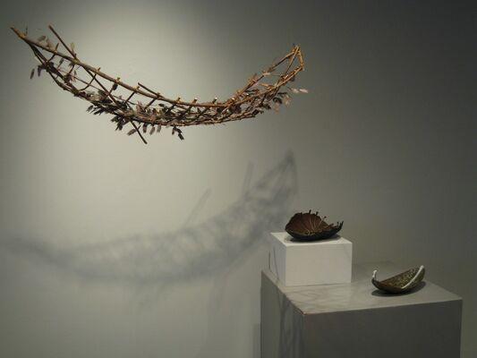 Ann Morris: Crossing Through, installation view