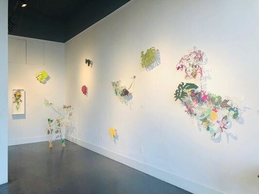 Leigh Anne Lester: No Necessary Time Axis on Evolutionary Novelties, installation view