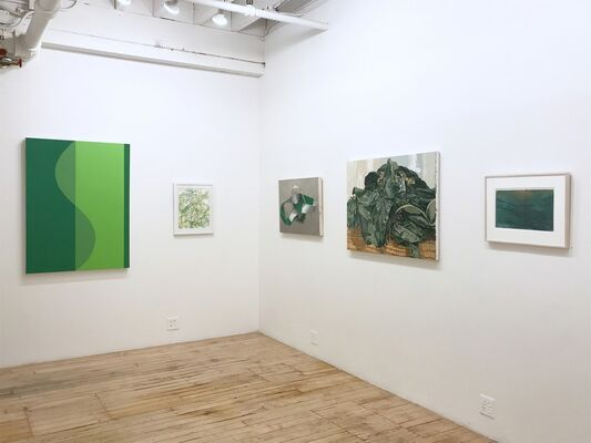 Green: The Impossible Color, installation view