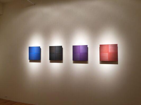 Susan Schwalb: Luminous Trace, installation view