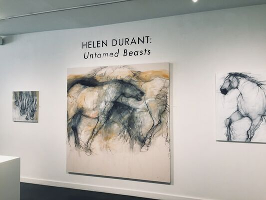 Helen Durant: Untamed Beasts, installation view
