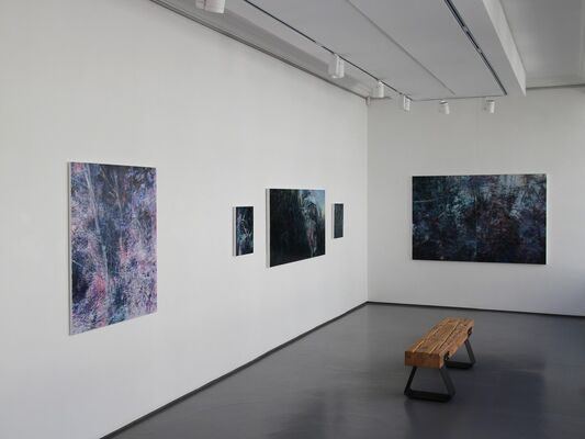 There; Not There   Karen Cronje, installation view