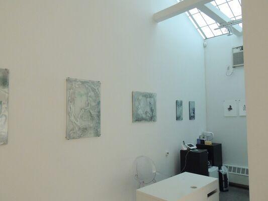 Blurred Lines, installation view