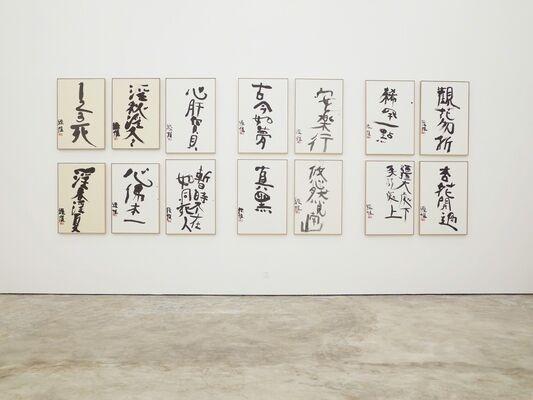 天上大风 Wind in the sky -  Araki Nobuyoshi and Zhu Xinjian, installation view