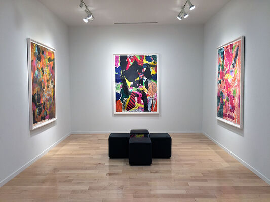 Jim Dine: Abstraction, installation view