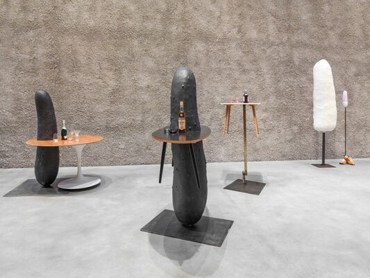 ERWIN WURM - The Serious Life of a Ridiculous Man, installation view