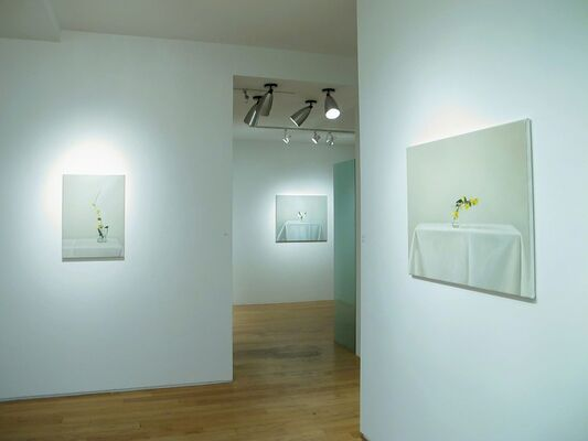 Flores encontradas by Martin La Rosa, installation view