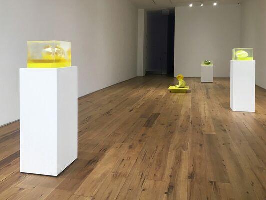 Rona Pondick, installation view