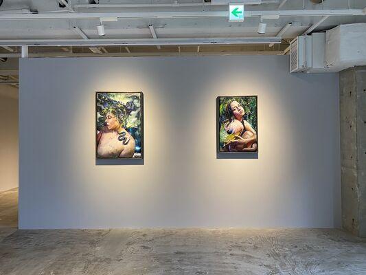 Martin Eder - Trancelucense, installation view