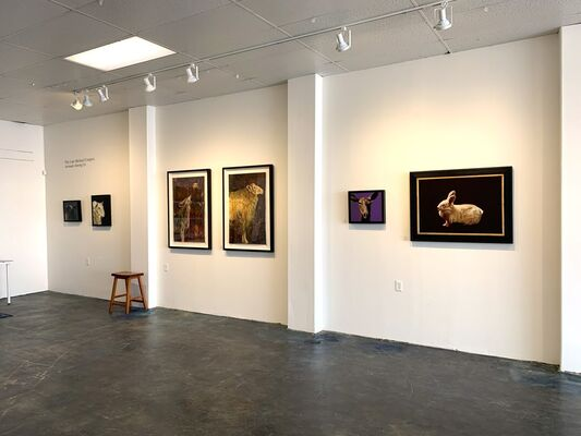 Animals and Birds Among Us: Four Solo Shows at Priscilla Fowler Fine Art Gallery, installation view