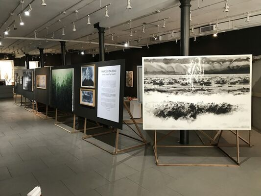 Living Under The Canopy, installation view