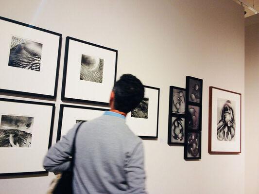 Michael G Jackson: Silver Sands, installation view