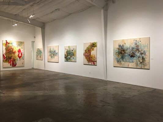 Lowell Boyers: Inscapes, installation view