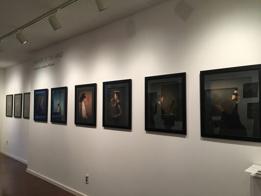 """Andrew Pinkham's """"Theater of the Mind"""", installation view"""