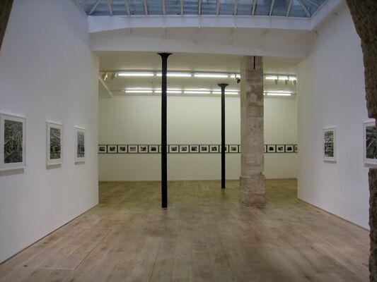 NICHOLAS NIXON, installation view