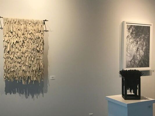 Tara Thacker, installation view
