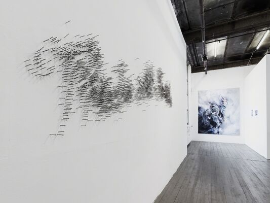 DYNAMEIS, installation view