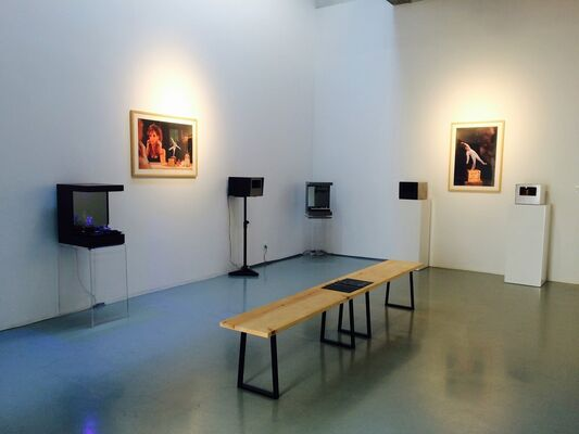 Pierrick Sorin - Optical theaters and video installations, installation view