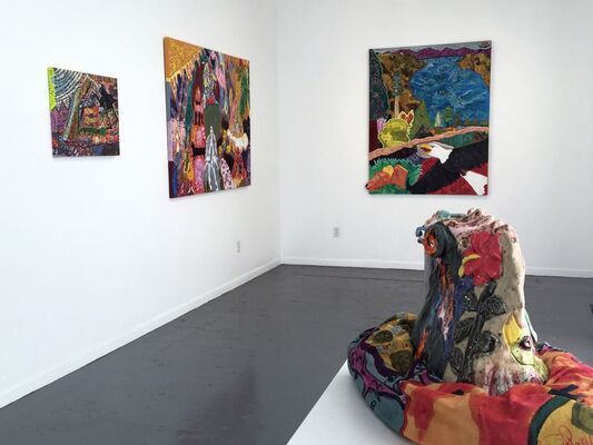 Maija Peeples-Bright: Beyond the Candy Store, installation view