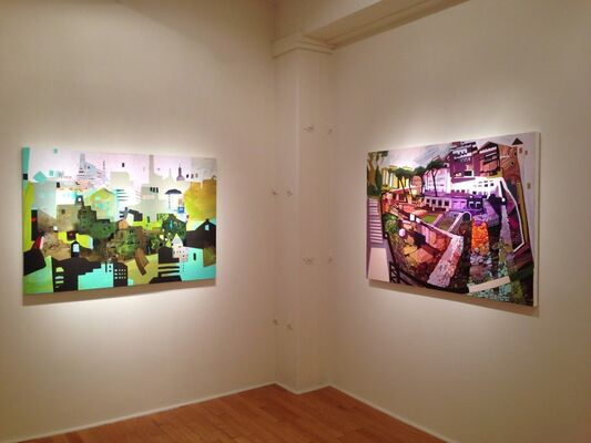 Sandy Litchfield: Deciduous Cities, installation view