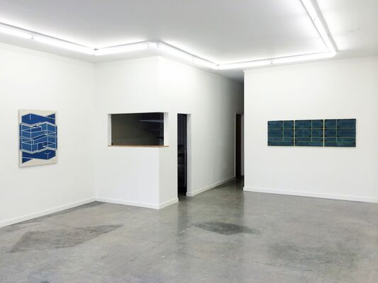 Elise Ferguson: Citron, installation view
