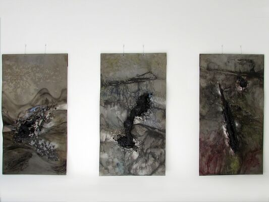 Dissecting the Unknown, installation view
