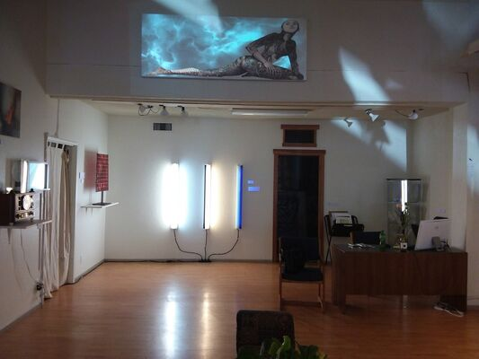 Sensorium, installation view